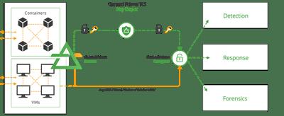 TLS Decryption