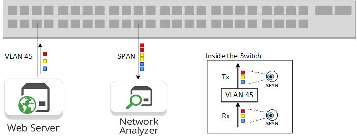 SPAN Duplication Web Server VLAN 45 Network Analyzer